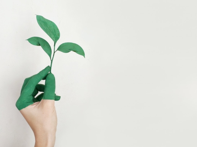 Eco friendly hand with leaf